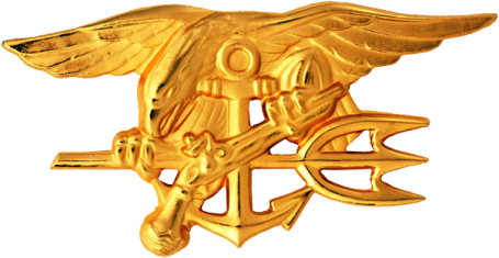 U.S. Navy Special Warfare Trident insignia worn by Navy SEALS. (U.S. Navy file photo)