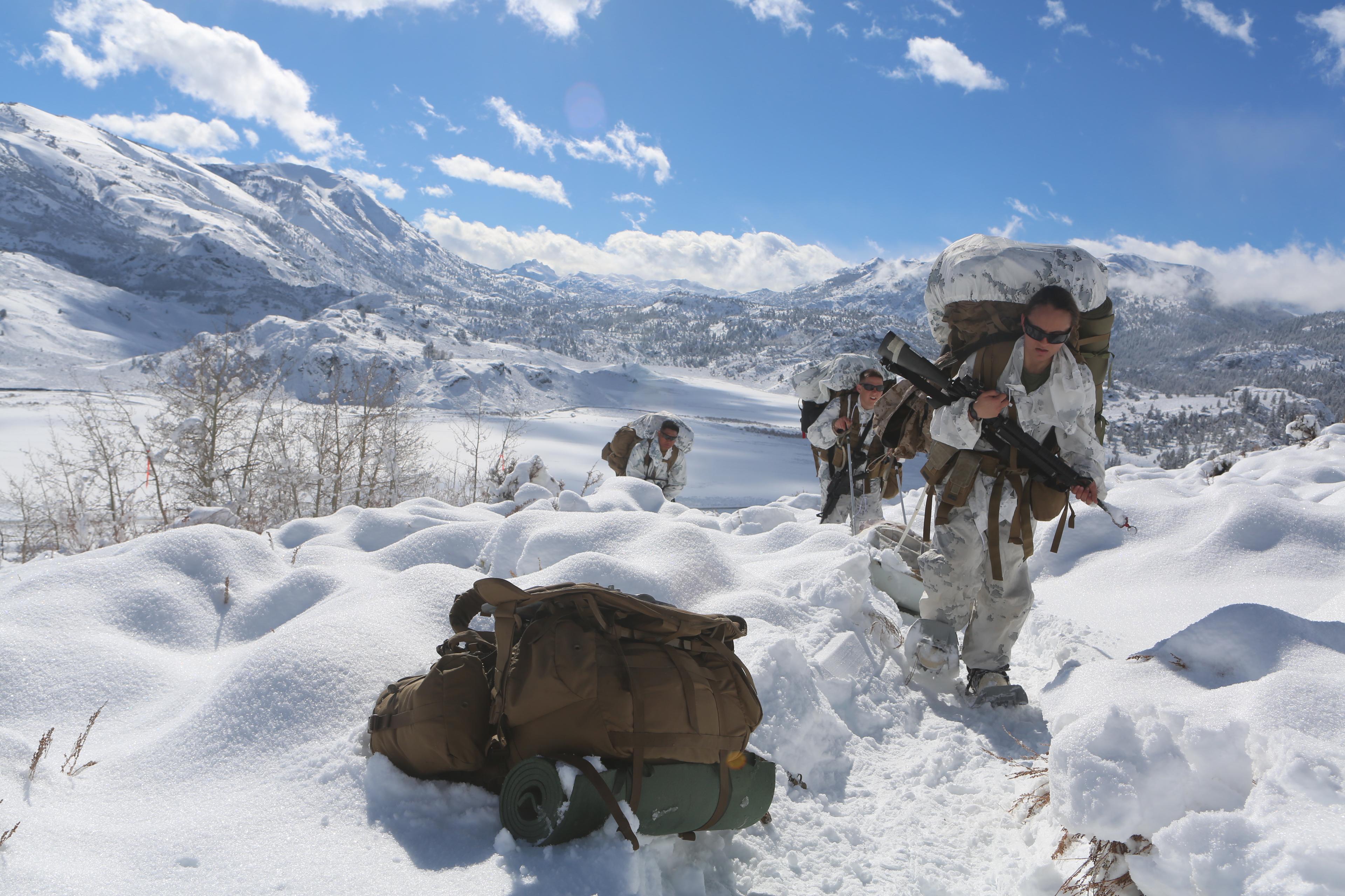 Frifo Snow Marines