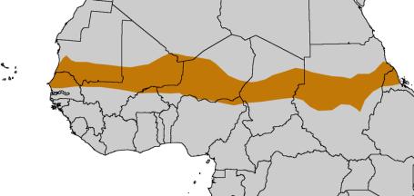 The Sahel Region (Map courtesy of XXXXX XXXXXX)