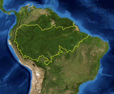 Amazon Basin. The yellow line encloses Amazon Basin as delineated by the World Wide Fund for Nature. National boundaries are shown in black. (Image by NASA, boundaries by Pfly, via wikipedia.)