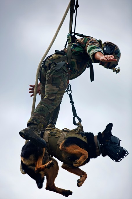(U.S. Marine Corps photo by Lance Corporal Austin A. Lewis)